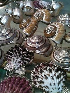 shells small